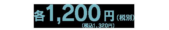 1,200円(税別)